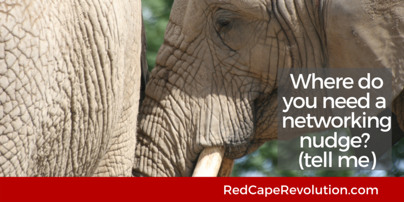 Where do you need a networking nudge Red Cape Revolution